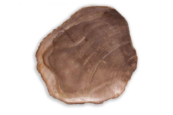 SOW versteinertes Holz Schale - SOW Schale - front view1