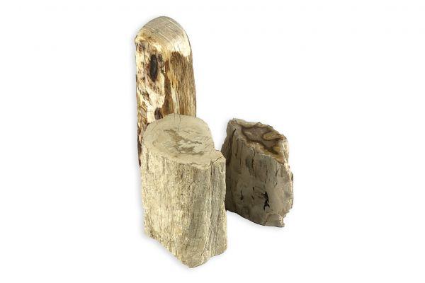 Versteinertes Holz - Très Amigos - front view1